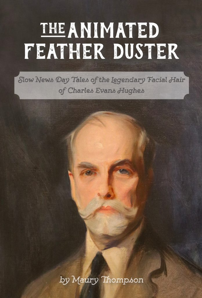 Book cover of The Animated Feather Duster
